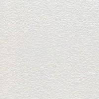 Плита Оазис 600х600х12мм